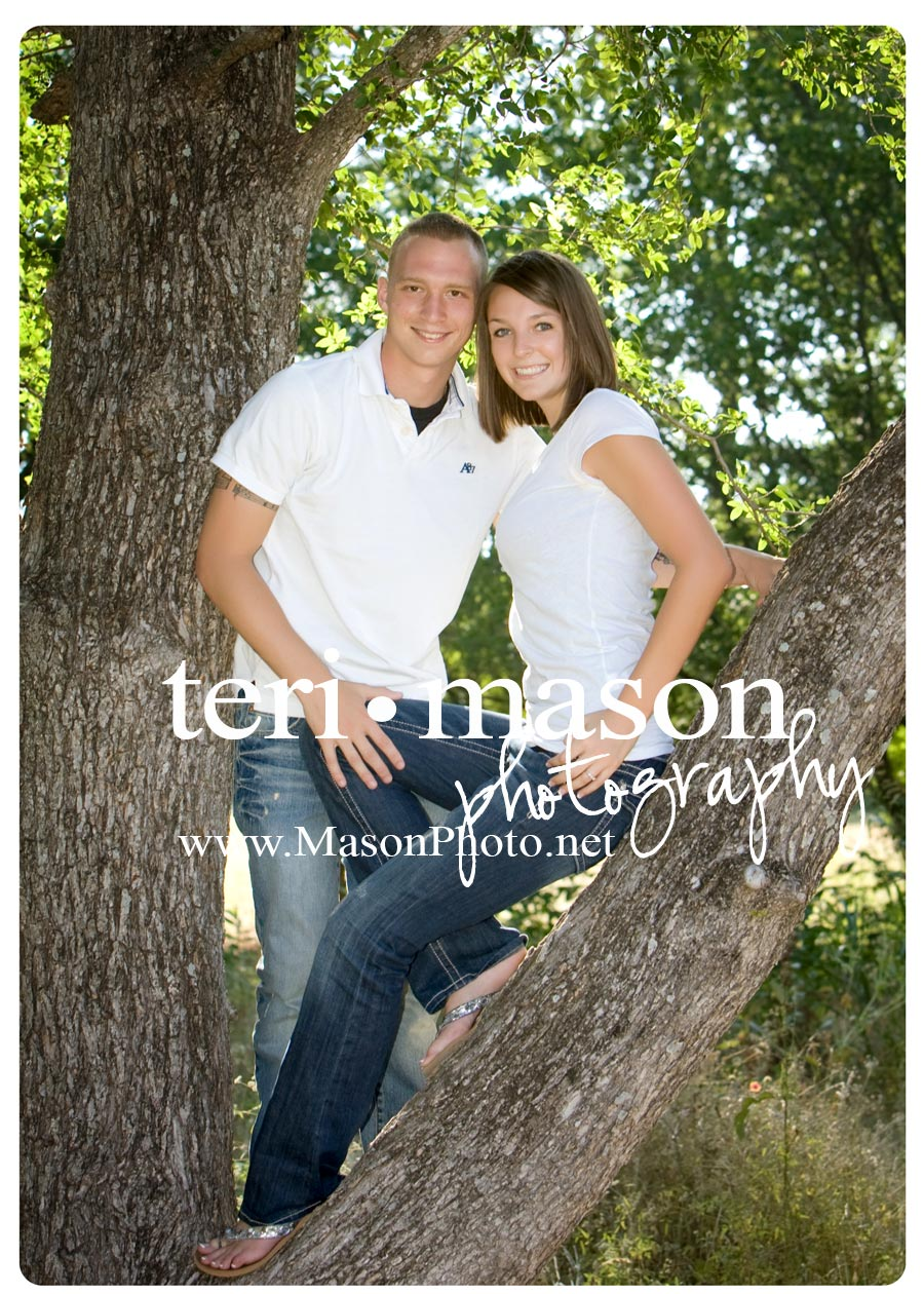 treetop engagement photo