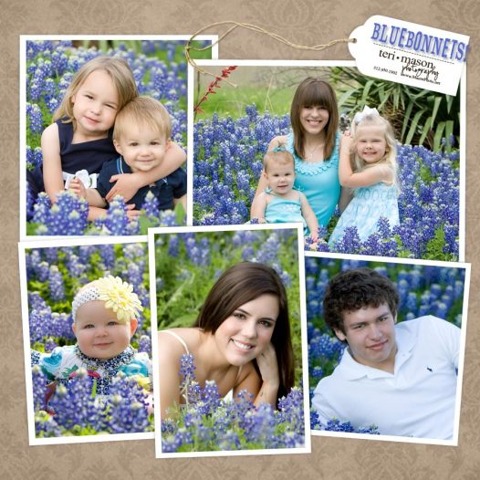 Texas Bluebonnet Portraits - Teri Mason Photography Georgetown, TX